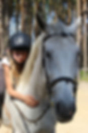 jazda konna, obóz jeździecki, obóz konny, konny obóz, stadnina koni, ranczo, stajnia, obóz konny lubuskie, ranczo lubuskie, trening jeździecki, skoki na koniu, skoki przez przeszkody, szkółka konna, konna szkółka, wakacje 2017, wakacje w siodle, konie, pasące się konie, jazda w terenie,
