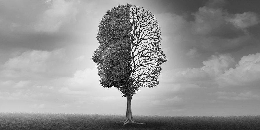 mind trees.jpg