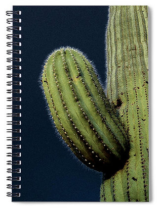Cactus In The Moonlight 2 Notebook