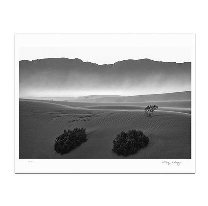 Mesquite Flats Dunes 1 Print