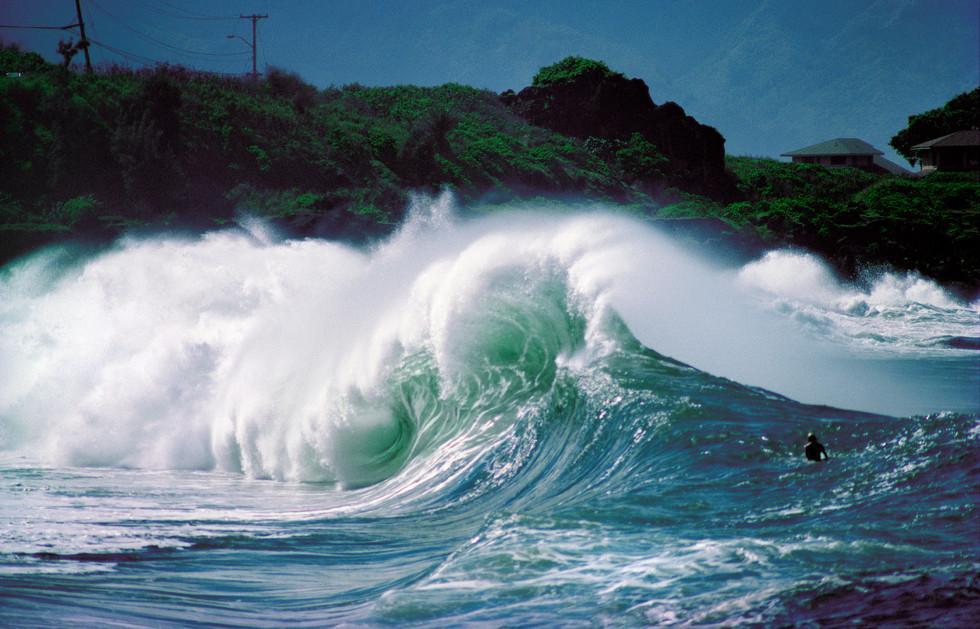 Waimea Shorebreak.jpg