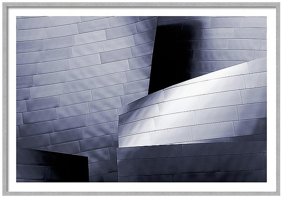 Walt Disney Concert Hall Custom Framed
