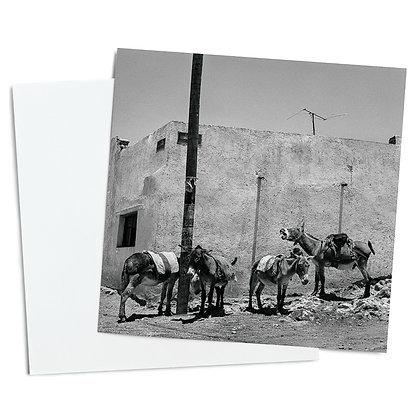 High Noon In Pozos De Mineral Greeting Card