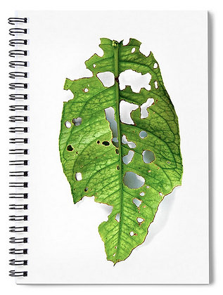 Leaf Leftover Notebook