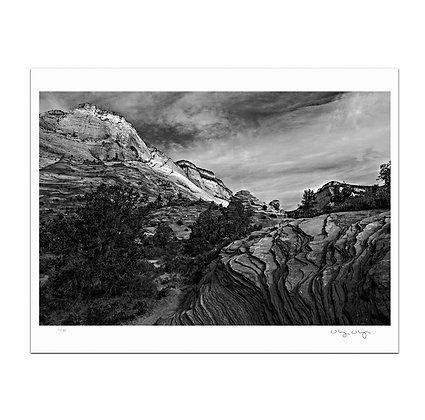 Zion Rocks In Monochrome Print
