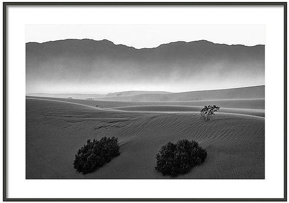 Mesquite Flats Dunes 1 Framed