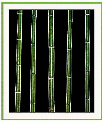 Bamboo Bars Custom Framed Print