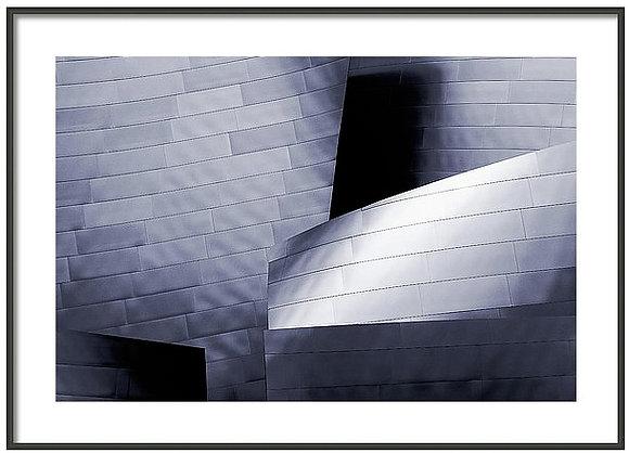 Walt Disney Concert Hall Framed