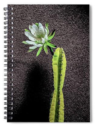 Cactus Flower In Bloom Notebook
