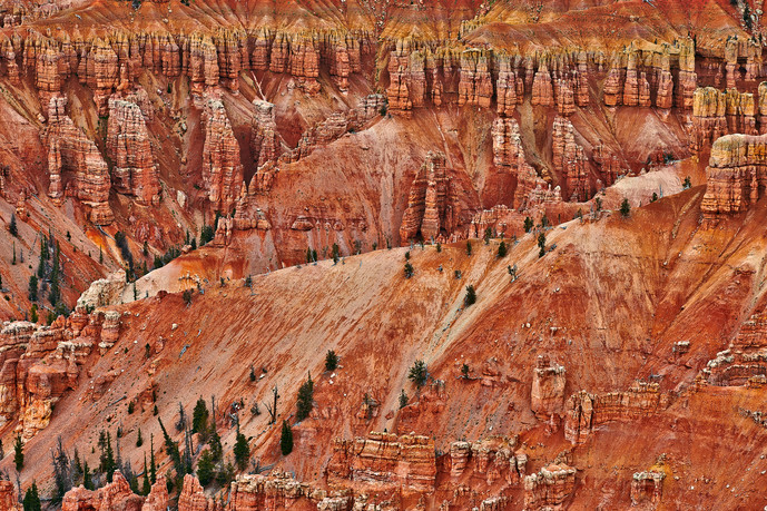 Rugged textures at Cedar Breaks