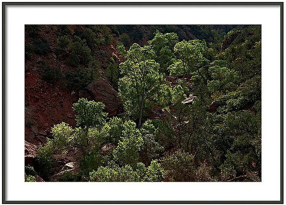Zion Stream Bed Framed