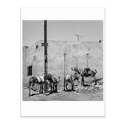 High Noon In Pozos De Mineral Print