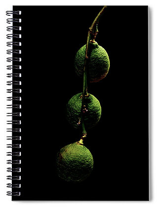 Three Lemon Notebook