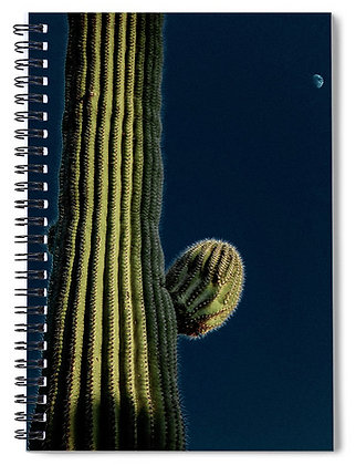 Cactus In The Moonlight Notebook