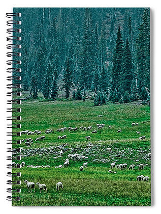 Grazing On The Highlands Notebook