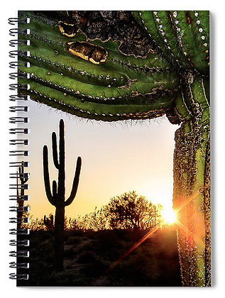 Arizona Saguaro Notebook