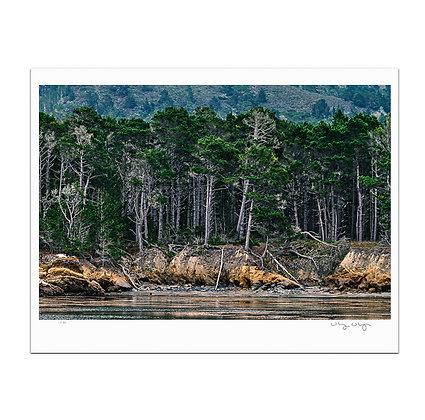 Still Waters At Point Lobos