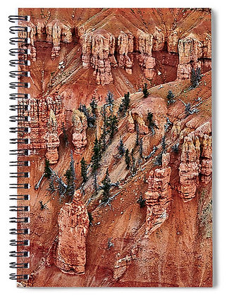 Cliff Pines At Cedar Breaks Notebook