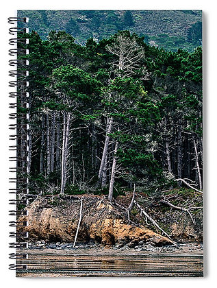Still Waters At Point Lobos Notebook