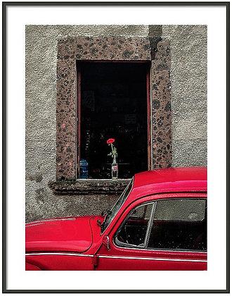 A Single Rose Framed