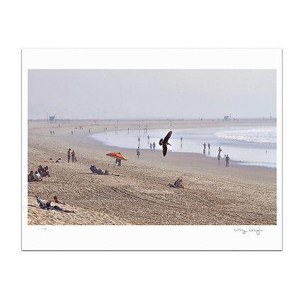 Patrolling Venice Beach Print