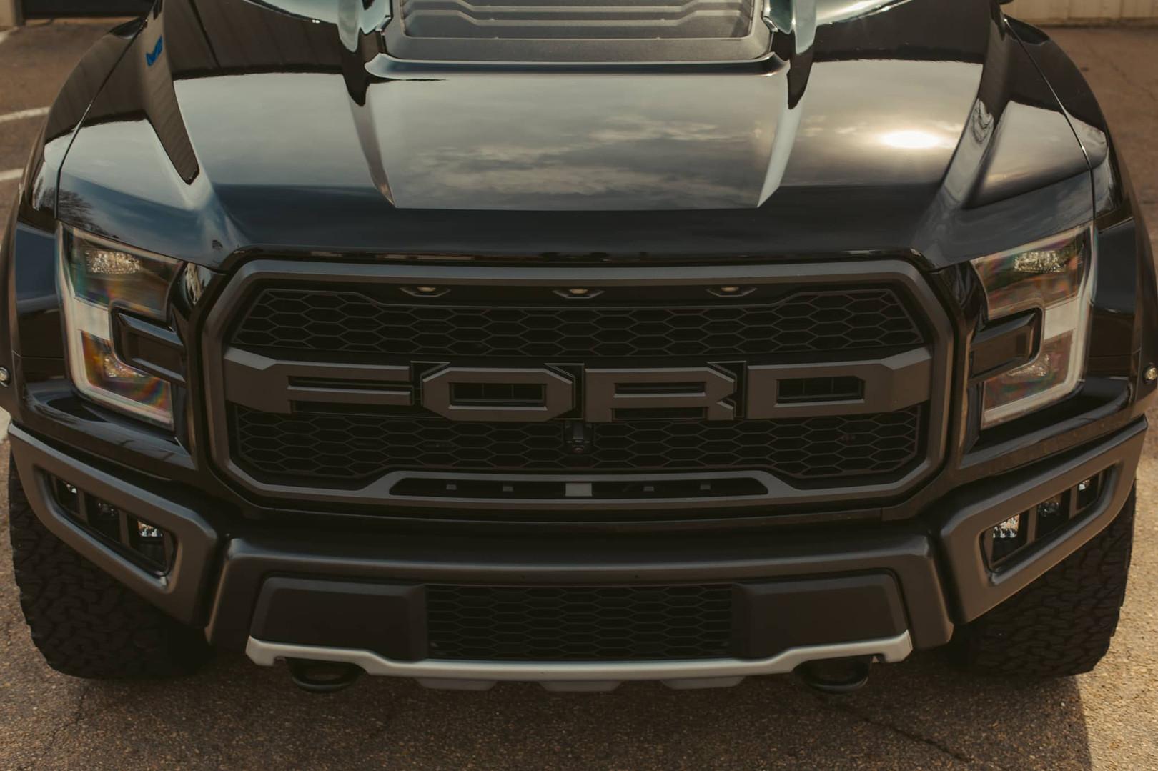 ZDD Raptor12.jpg