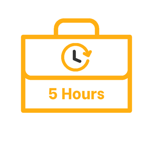 5 Hours - Emergency IAM Support