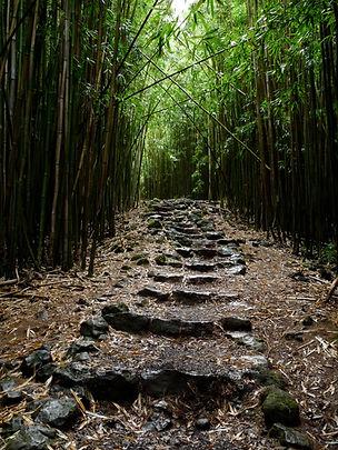Hana hike 20.jpg