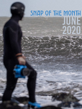 Snap of the Month | June 2020