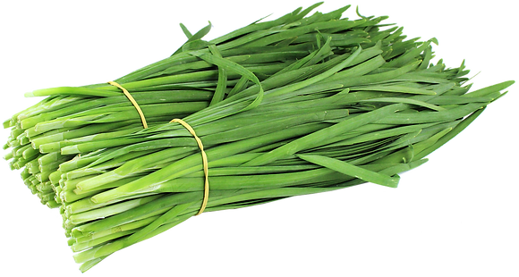 GREEN CHIVE
