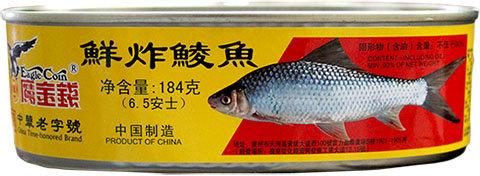 DACE FISH