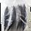 Thumbnail: ROUND SCAD