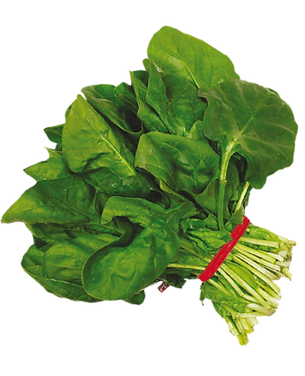 ROOTLESS SPINACH