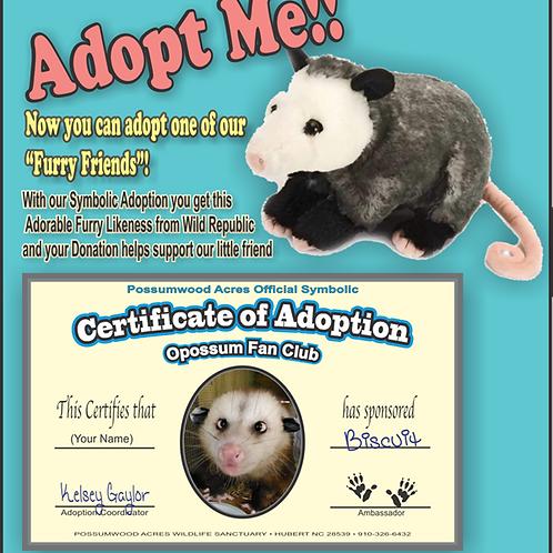 Plush Opossum Adoption
