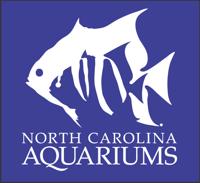 NCAqs-logo-white.png