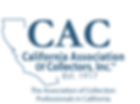 Blue Logo - AI Light Blue.png