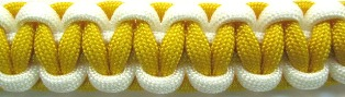 Yellow/Whie