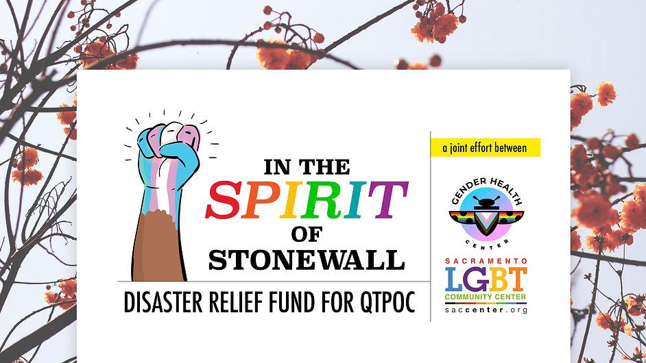InTheSpiritofStonewall-Banner.jpg