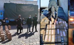 Can policial detectó cargamento de cocaína durante inspección de un camión