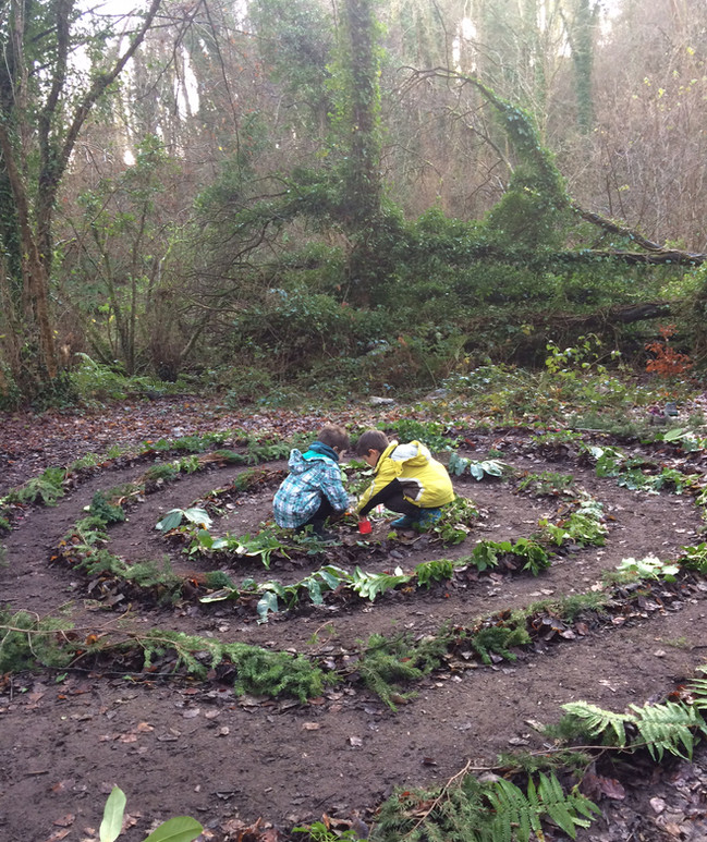 Winter: A Celtic Spiral in the woods