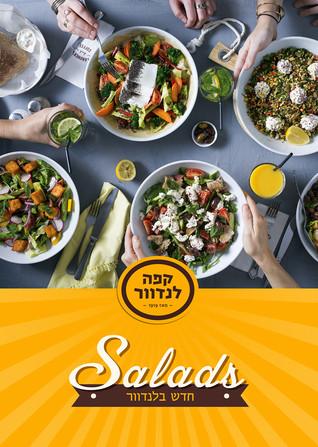 91-336 Salad 309X220 press.jpg