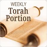 torah-portion.png