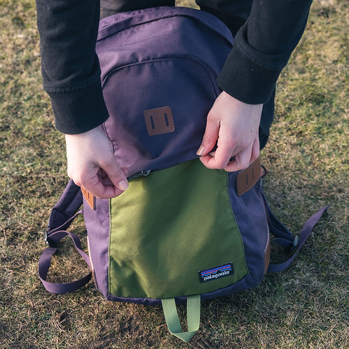 Patagonia 20L Backpack