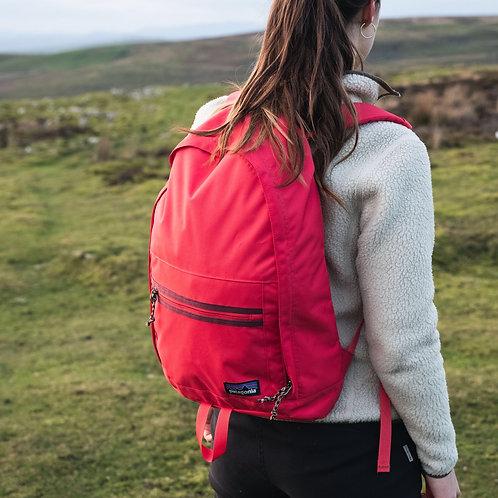 Patagonia 20L Arbor  Backpack