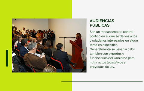 Audiencias Públicas.png