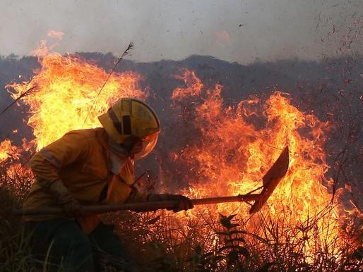 Manejo integral del fuego