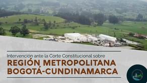 Región Metropolitana ante la Corte Constitucional