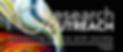 Screen Shot 2020-08-03 at 9.23.22 AM.png
