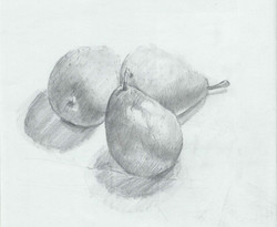 Drawing- Pears