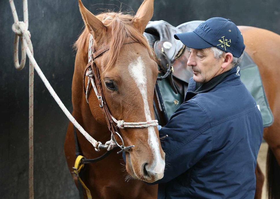 Julien Welsh horse breaker at Booralite Park at Pakenham South